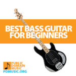 best-bass-guitar-for-beginners